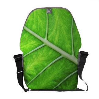 熱帯自然の緑の葉の写真の写真撮影のバッグ クーリエバッグ