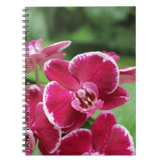 熱帯花および蘭のノート ノートブック