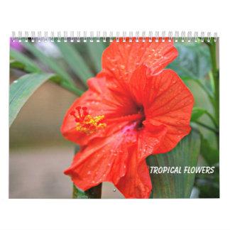 熱帯花 カレンダー