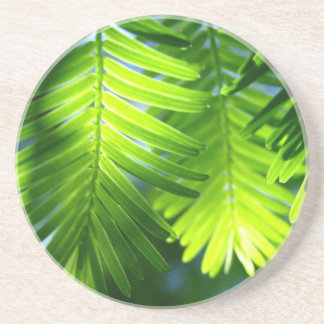 熱帯葉のコースター コースター