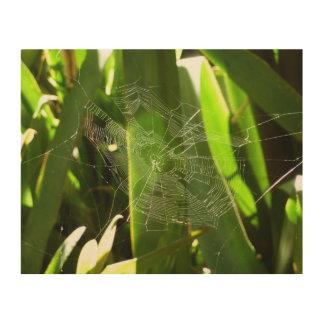 熱帯葉の緑の自然のSpiderweb ウッドウォールアート