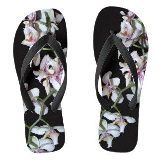 熱帯蘭の花の写真撮影のビーチサンダル ビーチサンダル