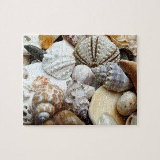 熱帯貝殻の写真撮影のパズル ジグソーパズル