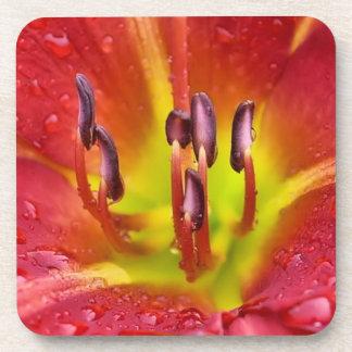 熱帯赤いユリ コースター