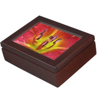 熱帯赤いユリ ジュエリーボックス