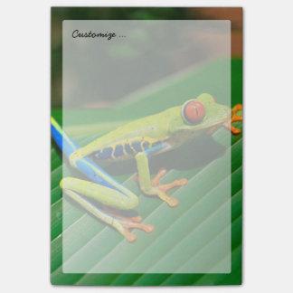 熱帯雨林の緑の目が赤いアマガエル ポストイット