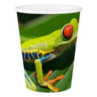 熱帯雨林の緑の目が赤いアマガエル 紙コップ