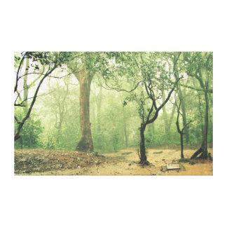 熱帯雨林西部のGhatsインド キャンバスプリント