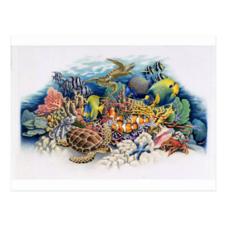 熱帯魚が付いている珊瑚水 ポストカード