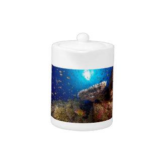 熱帯魚のグレート・バリア・リーフの珊瑚海のギフト