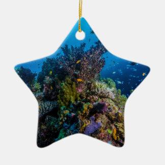熱帯魚のグレート・バリア・リーフの珊瑚海 セラミックオーナメント