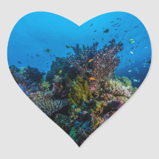 熱帯魚のグレート・バリア・リーフの珊瑚海 ハートシール
