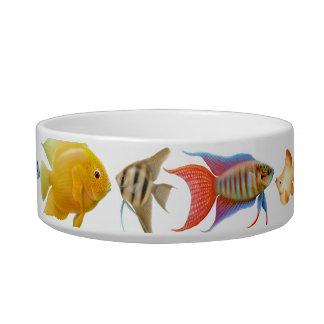 熱帯魚の猫の餌ボール ボウル