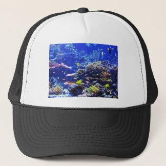 熱帯魚 キャップ