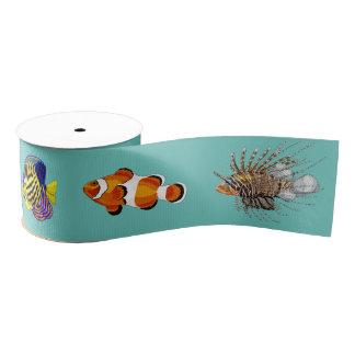 熱帯魚 グログランリボン