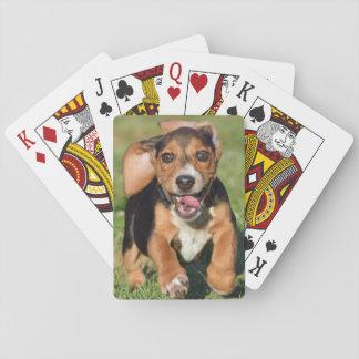 熱狂するなビーグル犬の子犬のランニング トランプ