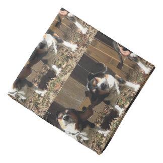 熱狂するなビーグル犬の耳のバンダナ バンダナ