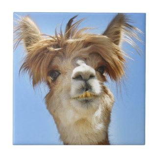 熱狂するな毛のアルパカ タイル
