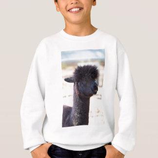 熱狂するな毛2を搭載するペルーのアルパカ スウェットシャツ