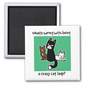 熱狂するな猫の女性であることと間違っている何が マグネット