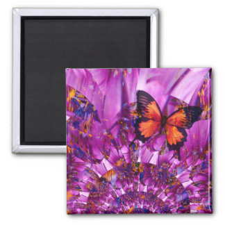 熱狂するな花の蝶 マグネット
