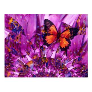 熱狂するな蝶 ポストカード