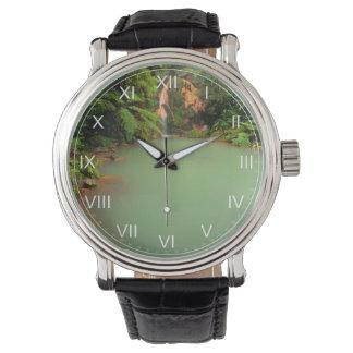 熱自然なプール 腕時計