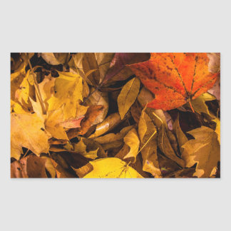 燃えること|秋|葉 長方形シールステッカー