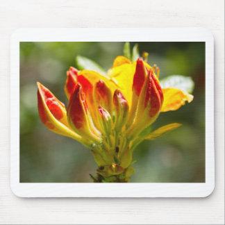 爆発の黄色い花 マウスパッド