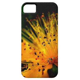 爆発 iPhone SE/5/5s ケース