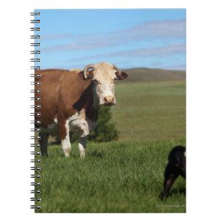 牛および犬が違うからあるが ノートブック
