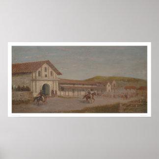 牛は代表団ドロレス、カリフォルニア(1243年)で運転しました ポスター