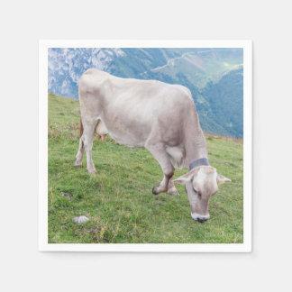 牛を牧草を食べること スタンダードカクテルナプキン