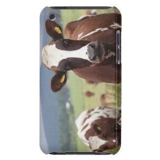 牛を牧草を食べること Case-Mate iPod TOUCH ケース
