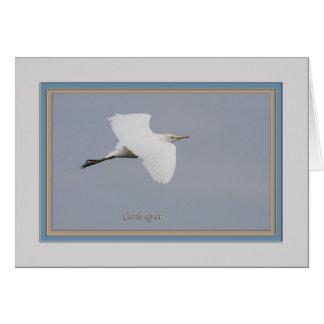 牛egret_5351 カード