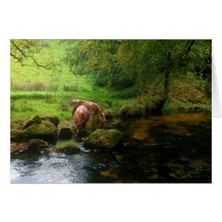 牛Golithaの滝の川Foweyコーンウォールイギリス カード