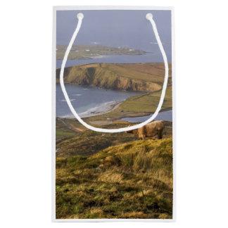 牧歌的なアイルランドの海岸 スモールペーパーバッグ