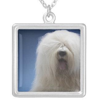 牧羊犬 シルバープレートネックレス