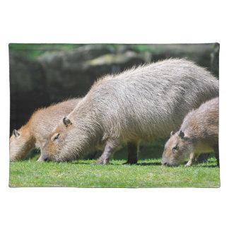 牧草を食べているカピバラ ランチョンマット