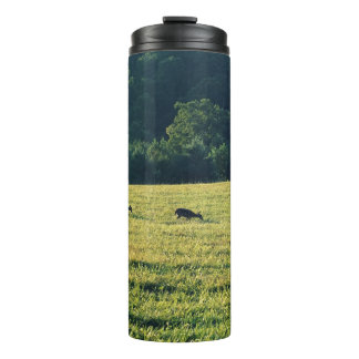 牧草を食べているシカ タンブラー
