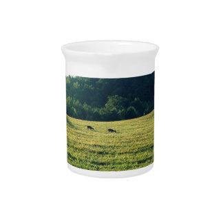 牧草を食べているシカ ピッチャー