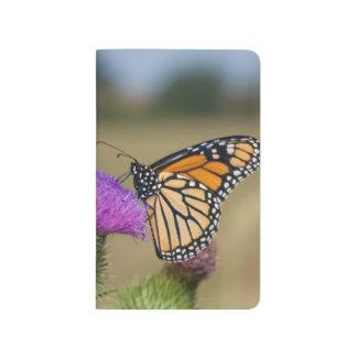 牧草地のアザミの草原リッジの(昆虫)オオカバマダラ、モナーク ポケットジャーナル