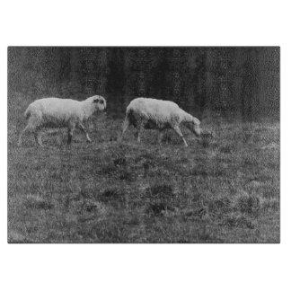 牧草地の写真の白黒ヒツジ カッティングボード