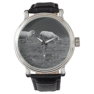 牧草地の写真の白黒ヒツジ 腕時計