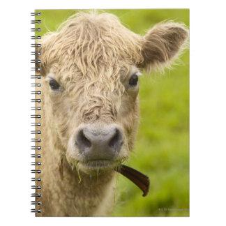 牧草地の家畜 ノートブック