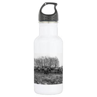 牧草地の白黒ベルギーの馬 ウォーターボトル