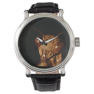 犠牲にするカマキリの~の腕時計 腕時計