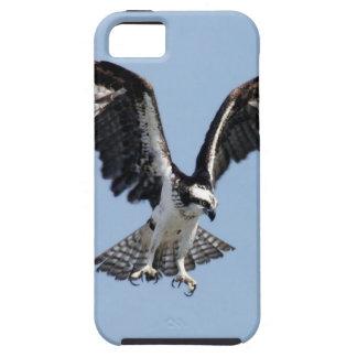 犠牲を捜している美しいミサゴの鳥 iPhone SE/5/5s ケース