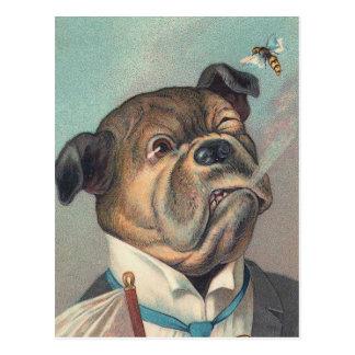 犬およびスズメバチのヴィンテージのイラストレーション ポストカード