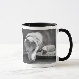犬およびモルモットのマグ マグカップ